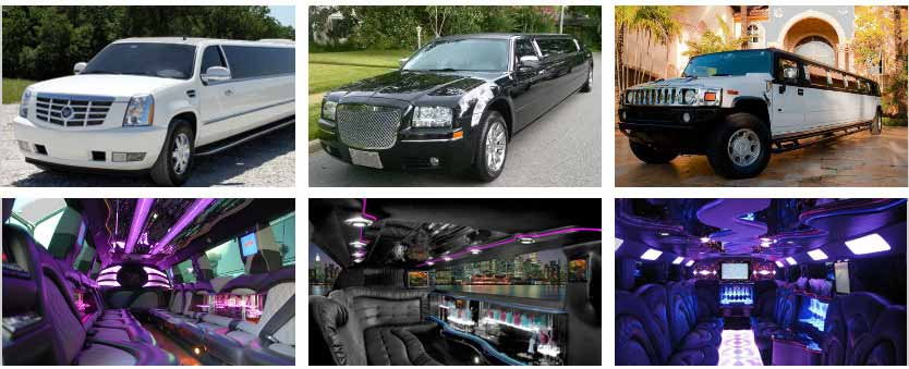 Wedding Transportation Party Bus Rental New Orleans